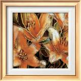 Apricot Dreams II Print by Lane Ashfield