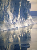 Tabular Iceberg in the Weddell Sea, Antarctica Prints by Pete Oxford