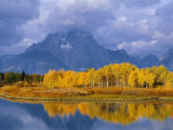Mt, Moran and Snake River at Oxbow Bend, Grand Teton National Park, Wyoming, USA Autumn Premium Photographic Print by Pete Cairns