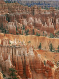 Hoodoo Sandstone Structures, Bryce Canyon National Park, Utah, USA Print by Pete Cairns