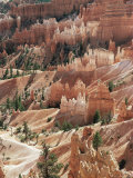 Hoodoo Sandstone Rock Formations, Bryce Canyon National Park, Utah, USA Premium Photographic Print by Richard Du Toit