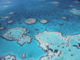 Aerial View of Great Barrier Reef, Queensland, Australia Photo by Jurgen Freund