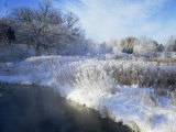 Scuppernong Creek in Winter Snow, Wisconsin, USA Posters by Larry Michael