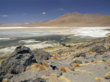 Lago Colorado, White Mineral Deposits and Red Dinoflagellates, 4200M Altitude, Andes, Bolivia Posters by Doug Allan