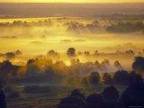 Sun Rise Over the Bryansk Forest, Bryansky Les Zapovednik, Russia Photographic Print by Igor Shpilenok