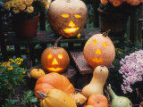 Different Kinds of Pumpkin and Pumpkin Faces at Halloween (Cucurbita Sp.) Poster by  Reinhard