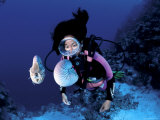 Diver with Pair of Pearly Nautilus, Great Barrier Reef, Queensland, Australia Photographic Print by Jurgen Freund