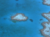 Aerial View of the Heart Reef, Hardy Reef, Great Barrier Reef, Queensland, Australia Poster by Jurgen Freund