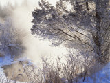 Early Morning Winter Frost Near River, Wisconsin, USA Photographic Print by Larry Michael
