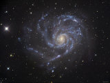 The Pinwheel Galaxy Photographie par Stocktrek Images 