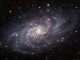 The Triangulum Galaxy Reprodukcja zdjęcia autor Stocktrek Images