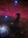The Horsehead Nebula Fotografiskt tryck av Stocktrek Images,