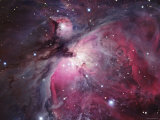 A Close up of the Orion Nebula Photographie par Stocktrek Images