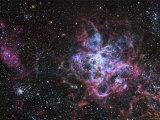 The Tarantula Nebula Fotografisk trykk av Stocktrek Images,