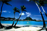 Palm Trees, Bora Bora Prints by Beverly Factor