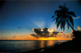 Sunrise Paradise Prints by Beverly Factor