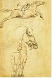 Sketch of a Horse Stretched Canvas Print by  Leonardo da Vinci