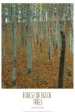 Forest of Beech Trees Poster by Gustav Klimt