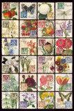 Alphabet du jardinier Affiches