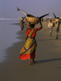 Women Carrying Fish Catch to the Market of Fishing Village, Puri, Orissa State, India Photographic Print by Jeremy Bright