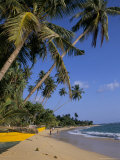 Palm Trees and Beach, Unawatuna, Sri Lanka Photographic Print by Charles Bowman