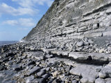 Fossil Bearing Lias Beds, Seven Rock Point, Jurassic Coast, Lyme Regis Photographic Print by Cyndy Black