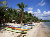 Beach with Palm Trees and Kayaks, Punta Soliman, Mayan Riviera, Yucatan Peninsula, Mexico Photographic Print by Nelly Boyd