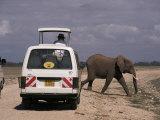Tourist Safari Vehicle and Elephant, Amboseli National Park, Kenya, East Africa, Africa Photographic Print by Charles Bowman