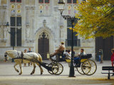 Horse-Drawn Trap, Bruges, Belgium Photographic Print by Tom Ang