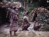 Mbnti Pygmies and Their Forest Huts, Ituri Rain Forest, Northern Zaire, Zaire, Africa Photographic Print by David Beatty