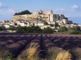 Grignan Chateau and Leavender Field, Grignan, Drome, Rhone Alpes, France Photographic Print by Charles Bowman