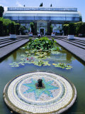 Lily Pond and Fountain, Winter Gardens, Domain Park, Auckland, North Island, New Zealand Photographic Print by Jeremy Bright