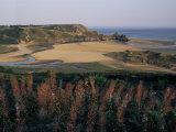 Oxwich Bay, Gower Peninsula, West Glamorgan, Wales, United Kingdom Photographic Print by Julia Bayne