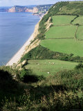 Coastline Near Sidmouth, Devon, England, United Kingdom Photographic Print by Cyndy Black