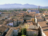 View South from Guinici Tower of City Rooftops and Cathedral, Lucca, Tuscany, Italy Photographic Print by Richard Ashworth