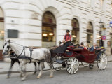 Horse-Drawn Tourist Carriage Near Hofburg, Vienna, Austria Photographic Print by Charles Bowman