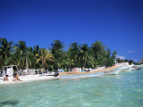 Isla Mujeres, Yucatan, Mexico, North America Photographic Print by Nelly Boyd