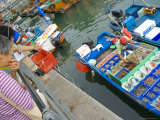 Fishing Boats, Sai Kung, New Territories, Hong Kong, China Photographic Print by Charles Bowman