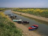 Vendee, Ile d'Olonne, Western Loire, Pays De La Loire, France Photographic Print by Michael Busselle