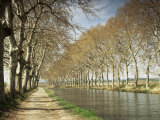 The Canal Du Midi, Near Capestang, Languedoc Roussillon, France Photographic Print by Michael Busselle