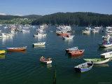 Fishing Boats and Headland, Ria De Cedeira, La Coruna Area, Galicia, Spain Photographic Print by Michael Busselle