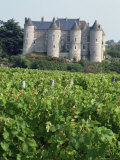 Chateau of Luynes, Indre Et Loire, Loire Centre, Loire Valley, France Photographic Print by Michael Busselle