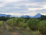 Arenal Volcano from Afar, Muelle, Alajuela, Costa Rica, Central America Photographic Print by Pearl Bucknall