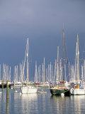 Boats at Town Quay, Lymington, Hampshire, England, United Kingdom Photographic Print by Jean Brooks