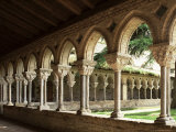 Cloister of Moissac, Moissac, Tarn Et Garonne, France Photographic Print by Michael Busselle