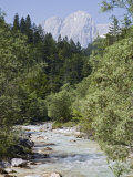 Bistrica River and Forest with Stenar Mountain Beyond in Summer, Triglav National Park, Mojstrana Photographic Print by Pearl Bucknall
