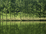River Lot Near Entraygues, Midi Pyrenees, France Photographic Print by Michael Busselle