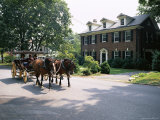 Horse and Carriage in Lee Avenue, Lexington, Virginia, United States of America, North America Photographic Print by Pearl Bucknall