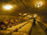 The Cellars, Chateau Lafitte Rothschild, Pauillac, Gironde, France Photographic Print by Michael Busselle