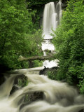 Waterfall Near Le Mont Dor, Auvergne, France Photographic Print by Michael Busselle